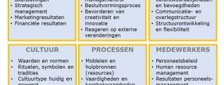 Organisatieanalyse Rorink & Öztürk