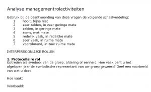 analyse-managementrollen