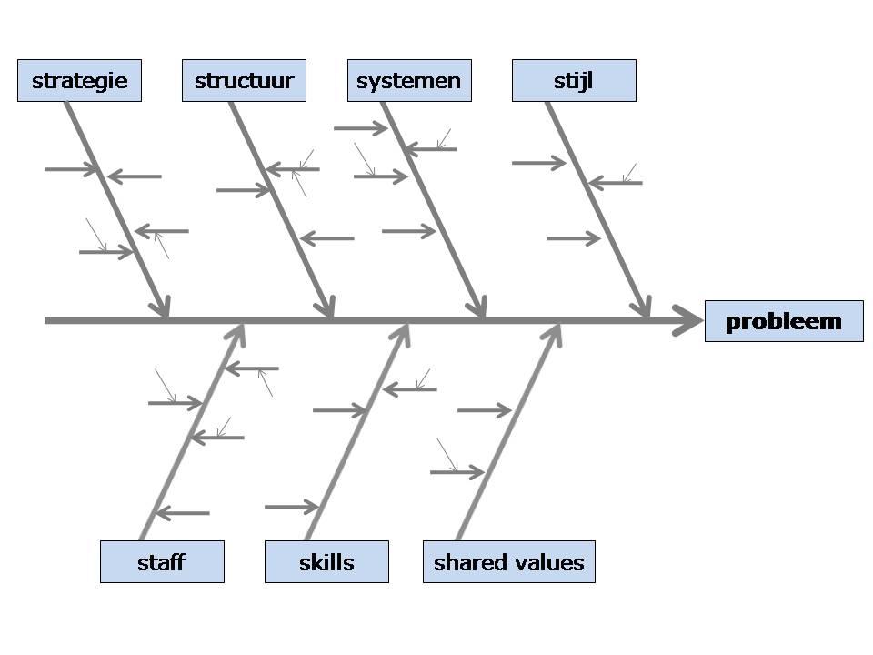 model_ishikawadiagram_visgraatdiagram
